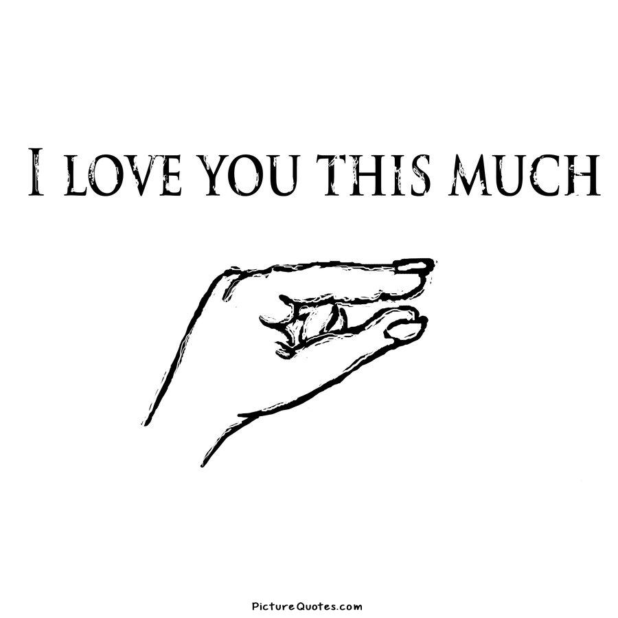 Quotes About How Much I Love You Interesting I Love You This Much  Picture Quotes
