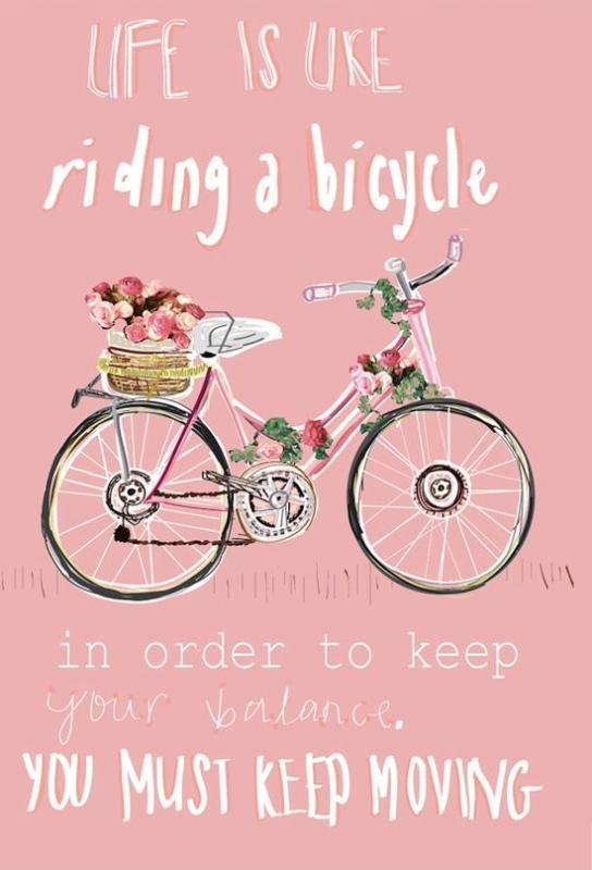 Life is like riding a bicycle. To keep your balance, you must keep moving Picture Quote #3