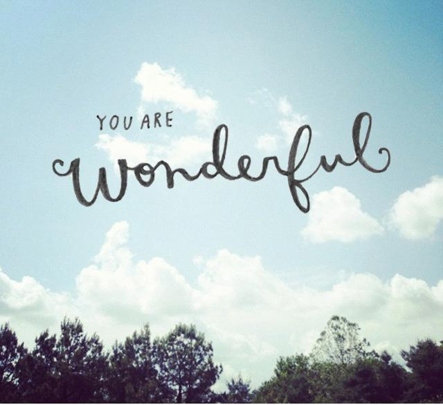you are wonderful quotes quotesgram