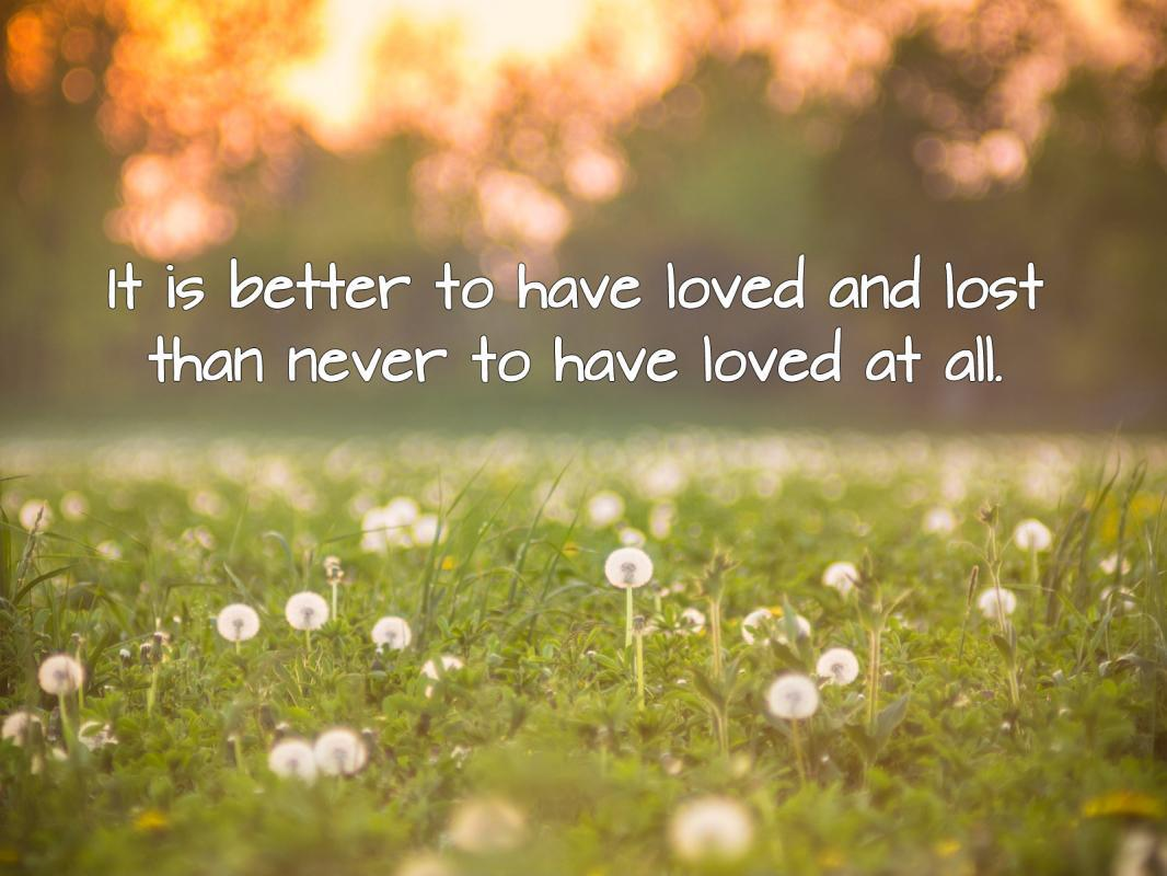 It is better to have loved and lost than never to have loved at all. Picture Quote #1