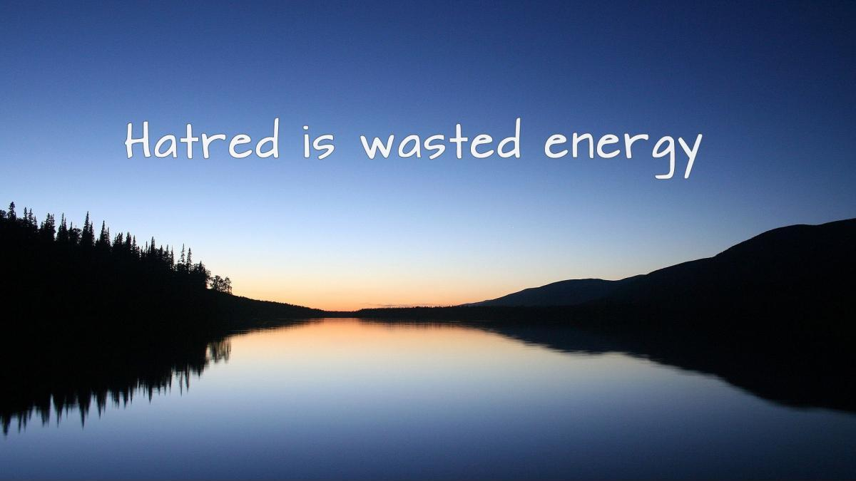 Energy Quotes Hatred Is Wasted Energy  Picture Quotes
