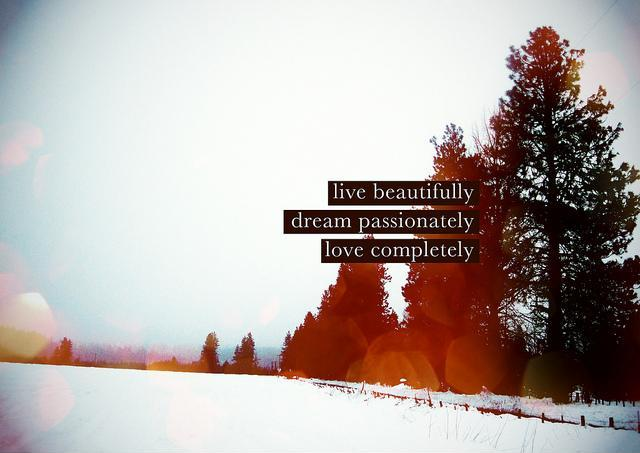 Live beautifully. Dream passionately. Love completely Picture Quote #2
