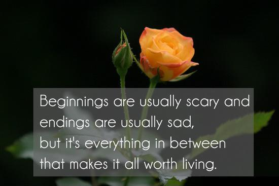 Beginnings are usually scary and endings are usually sad but its every things in between that makes it all worth living Picture Quote #1
