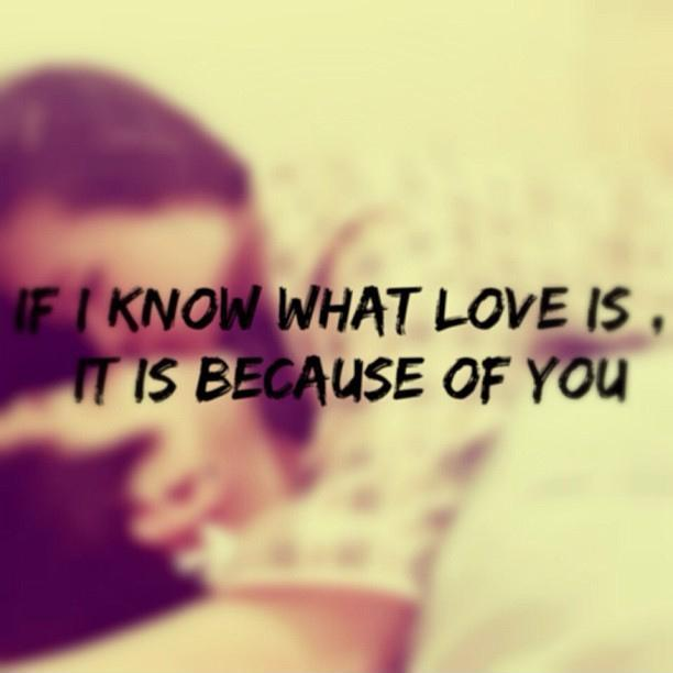 Love Is Quotes: If I Know What Love Is, It Is Because Of You