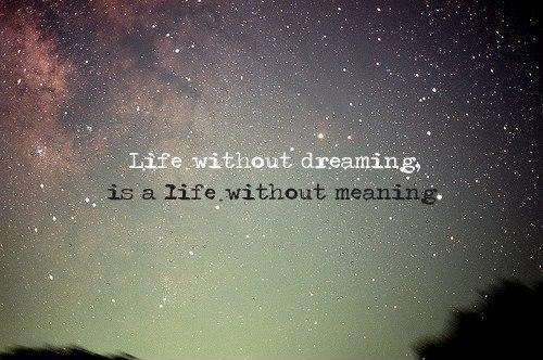 Life without dreaming is a life without meaning Picture Quote #1