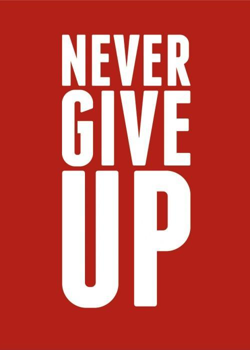 Never give up Picture Quote #3
