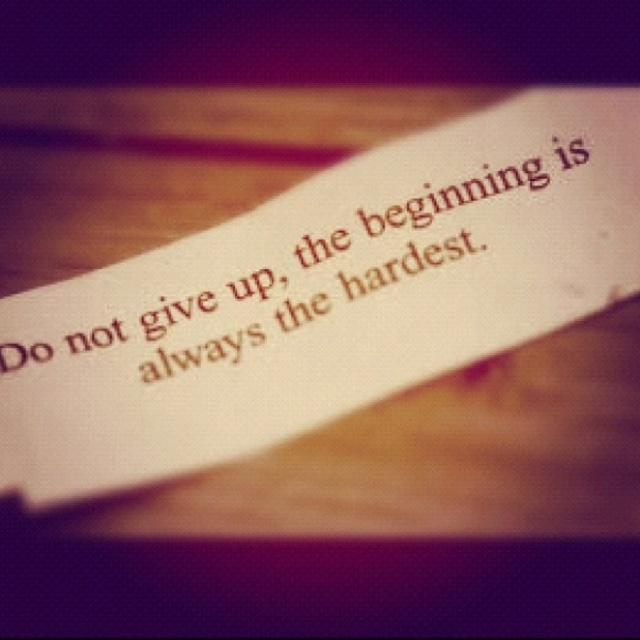 Don't give up, the beginning is always the hardest Picture Quote #2