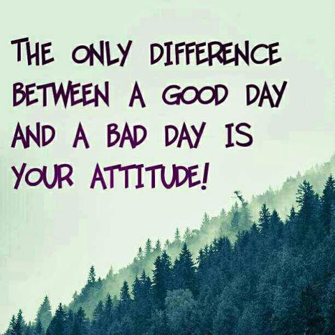 The only difference between a good day and a bad day is your attitude Picture Quote #3