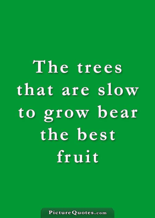 The trees that are slow to grow bear the best fruit Picture Quote #2