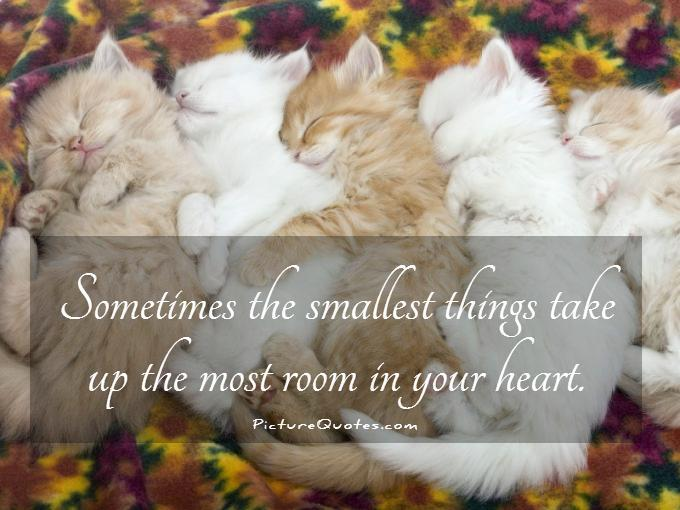 Sometimes the smallest things take up the most room in your heart Picture Quote #1