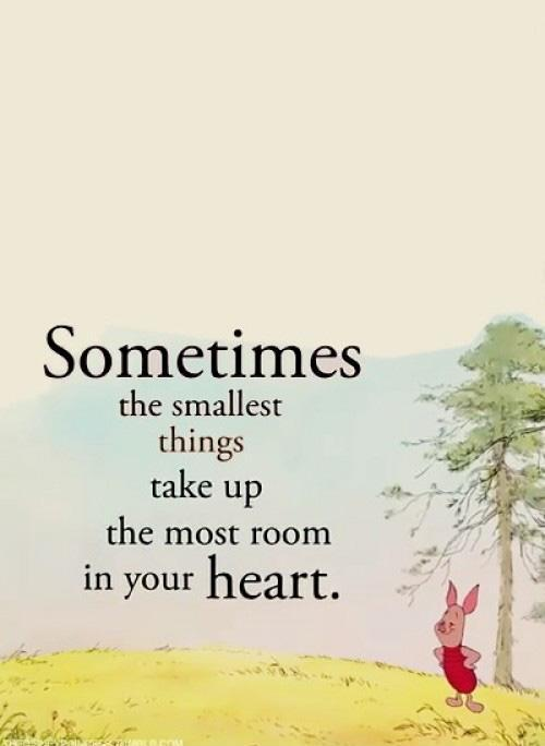 Sometimes the smallest things take up the most room in your heart Picture Quote #3
