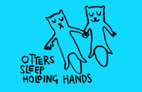 Sea otters sleep holding hands Picture Quote #3