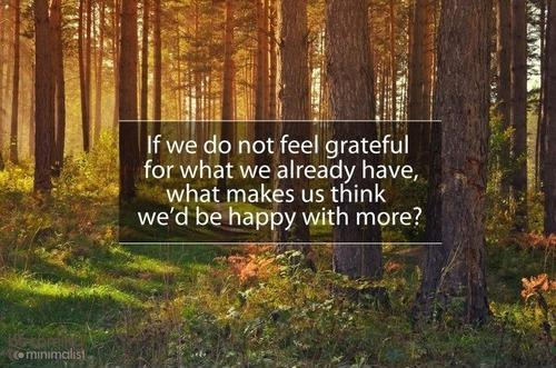 If we do not feel grateful for what we already have, what makes us think we'd be happy with more Picture Quote #1