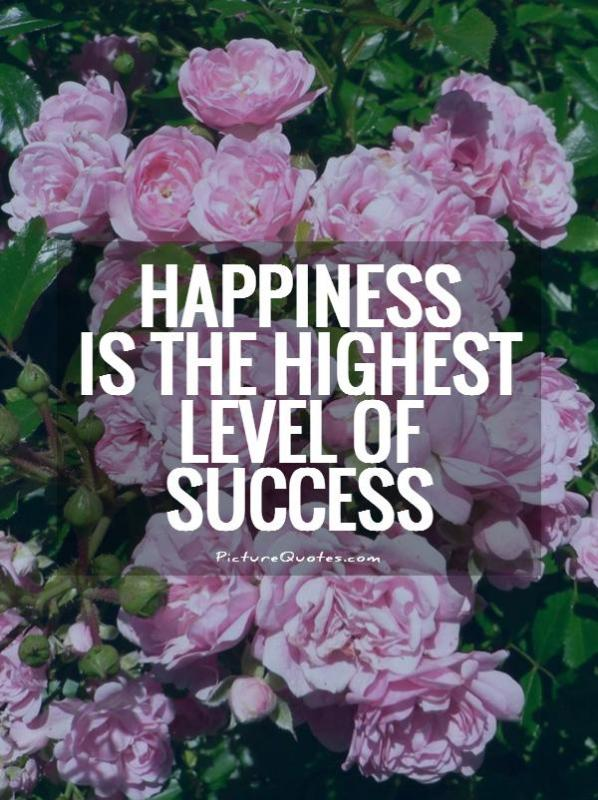 Happiness is the highest level of success Picture Quote #1