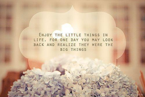 Enjoy the little things, for one day you may look back and realize they were the big things Picture Quote #1