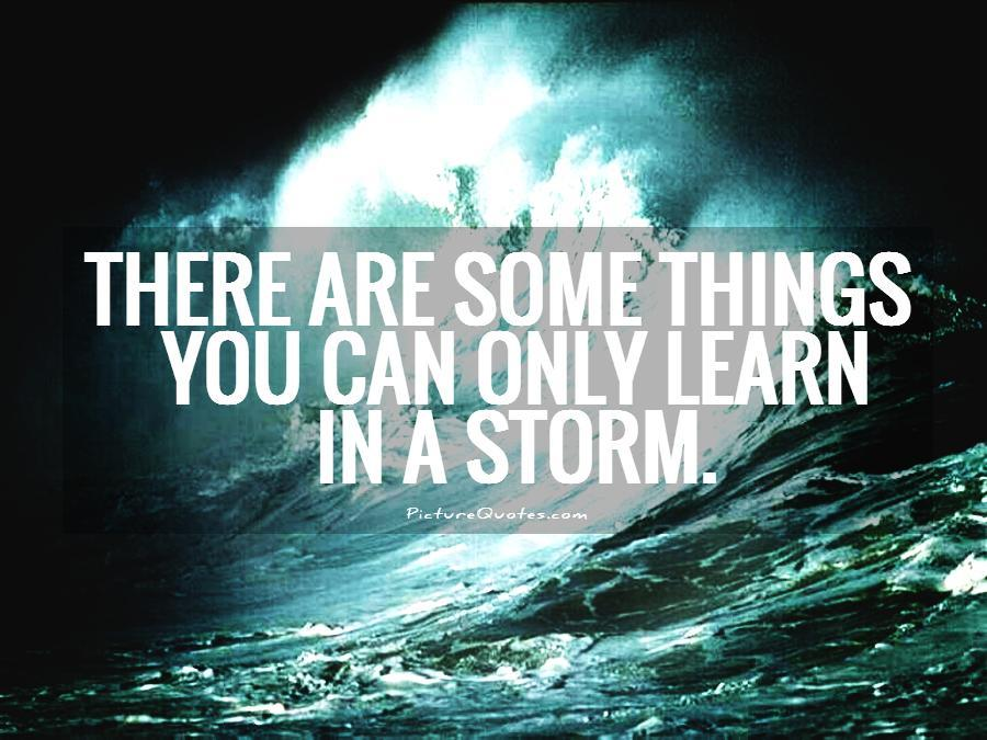 There are some things you can only learn in a storm. Picture Quote #1