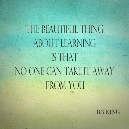 The beautiful thing about learning is that nobody can take it away from you Picture Quote #1
