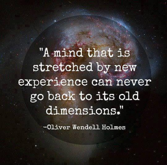 A mind that is stretched by a new experience can never go back to its old dimensions Picture Quote #2
