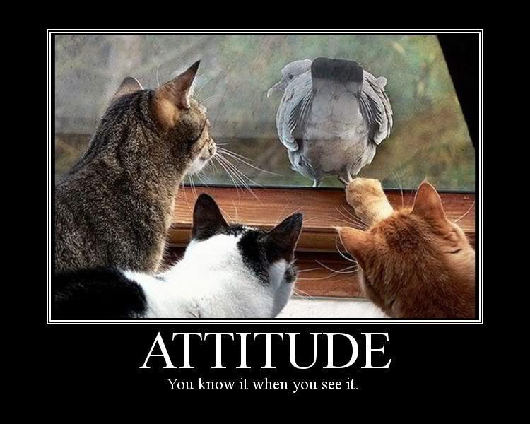 Attitude. You know it when you see it Picture Quote #1