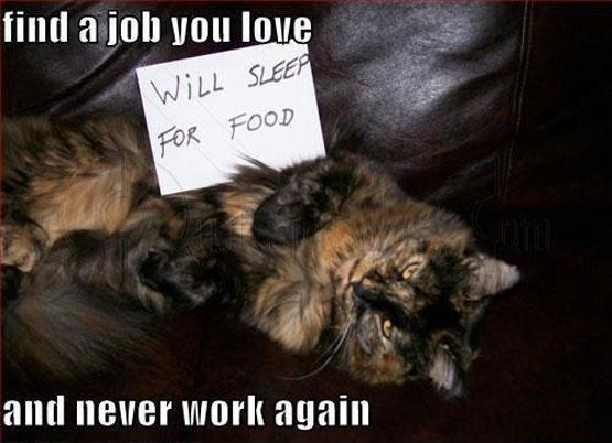 Find a job you love, and never work again Picture Quote #1
