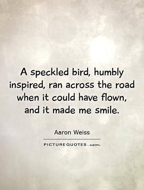 A speckled bird, humbly inspired, ran across the road when it could have flown, and it made me smile Picture Quote #1