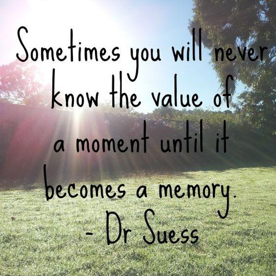 Sometimes you will never know the value of a moment until it becomes a memory Picture Quote #3