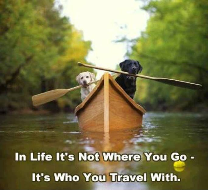 In life, it's not where you go, it's who you travel with Picture Quote #1