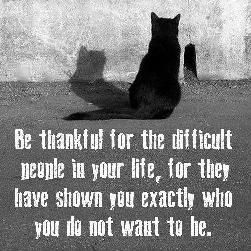 Be thankful for all the difficult people in your life, for they have shown you exactly who you do not want to be Picture Quote #1