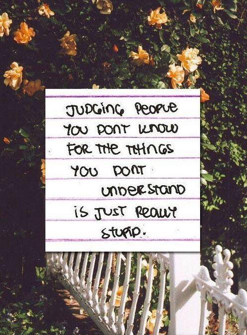 Judging people you don't know for the things you don't understand is just really stupid Picture Quote #1
