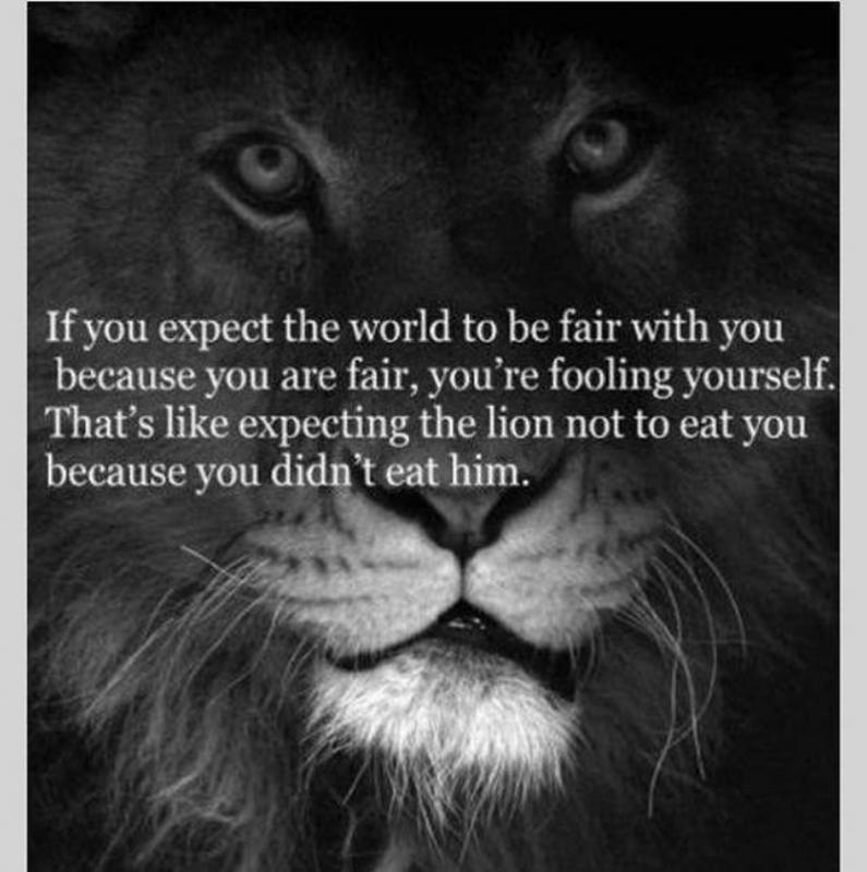 If you expect the world to be fair with you because you are fair, you're fooling yourself. That's like expecting the lion not to eat you because you didn't eat him Picture Quote #1