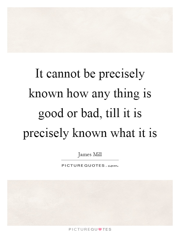 It cannot be precisely known how any thing is good or bad, till it is precisely known what it is Picture Quote #1
