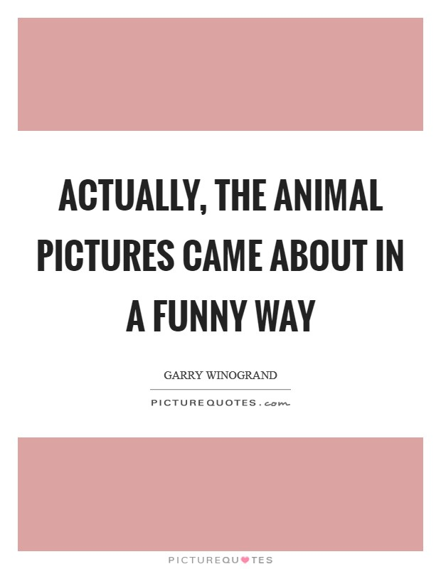 Actually, the animal pictures came about in a funny way Picture Quote #1