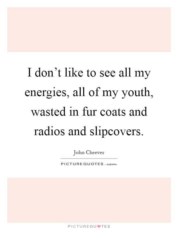 I don't like to see all my energies, all of my youth, wasted in fur coats and radios and slipcovers Picture Quote #1