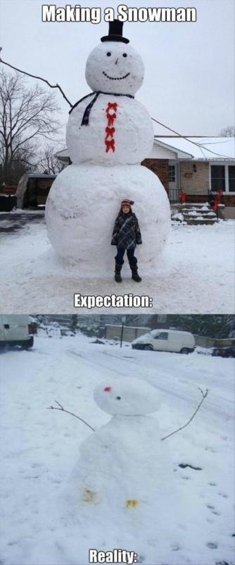 Making a snowman. Expectation. Reality Picture Quote #1