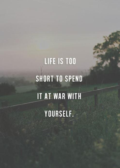 Life is too short to spend it at war with yourself Picture Quote #1