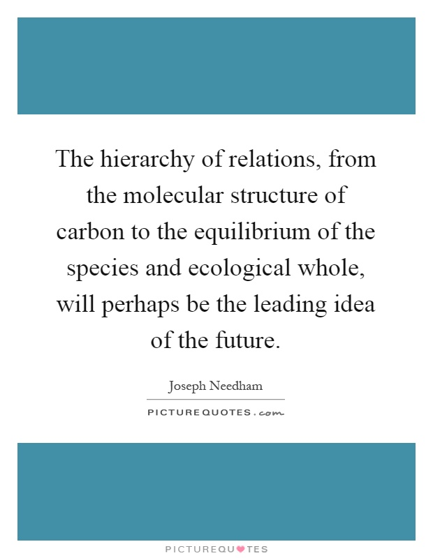 The hierarchy of relations, from the molecular structure of carbon to the equilibrium of the species and ecological whole, will perhaps be the leading idea of the future Picture Quote #1
