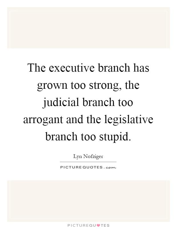 executive and legislative branches relationship quiz