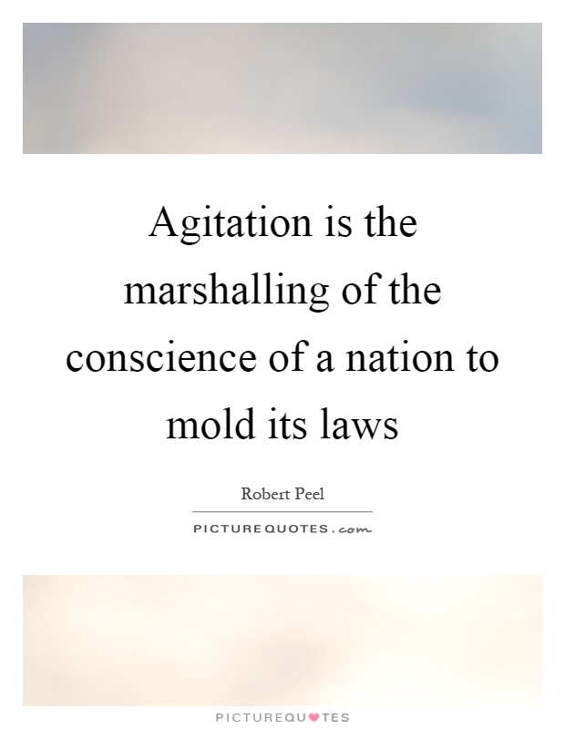 Agitation is the marshalling of the conscience of a nation to mold its laws Picture Quote #1