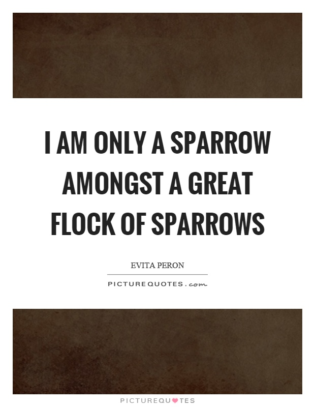 I am only a sparrow amongst a great flock of sparrows Picture Quote #1