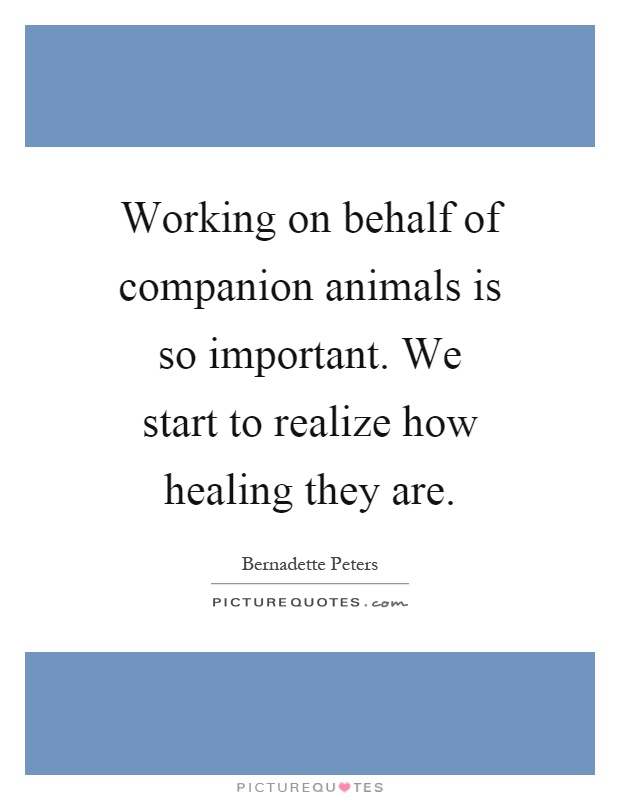 Working on behalf of companion animals is so important. We start to realize how healing they are Picture Quote #1