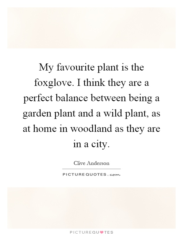 My favourite plant is the foxglove. I think they are a perfect balance between being a garden plant and a wild plant, as at home in woodland as they are in a city Picture Quote #1