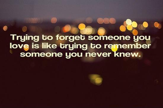 Trying to forget someone you love is like trying to remember someone you never knew Picture Quote #1