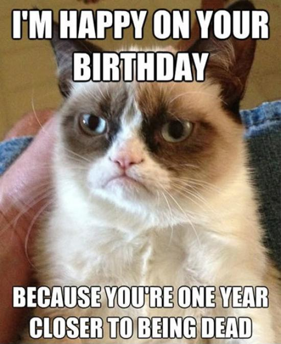 I'm happy on your birthday because you're one year closer to being dead Picture Quote #1