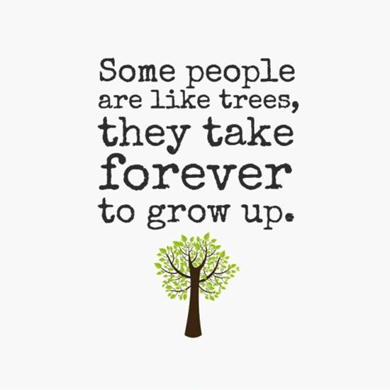 Some people are like trees, they take forever to grow up Picture Quote #1
