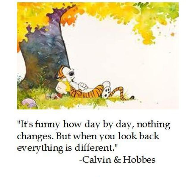 It's funny how day by day nothing changes, But when you look back everything is different Picture Quote #1