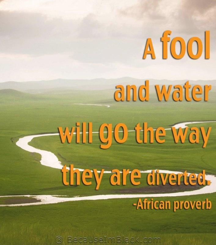 A fool and water will go the way they are diverted Picture Quote #1