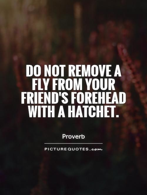 Do not remove a fly from your friend's forehead with a hatchet Picture Quote #1