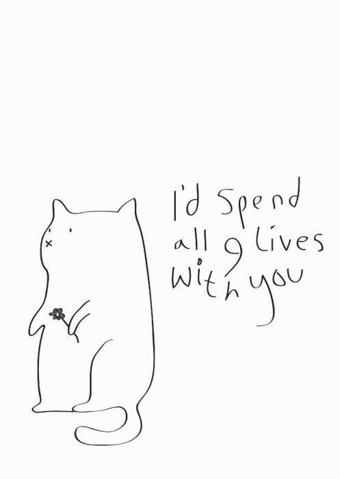 I'd spend all 9 lives with you Picture Quote #1