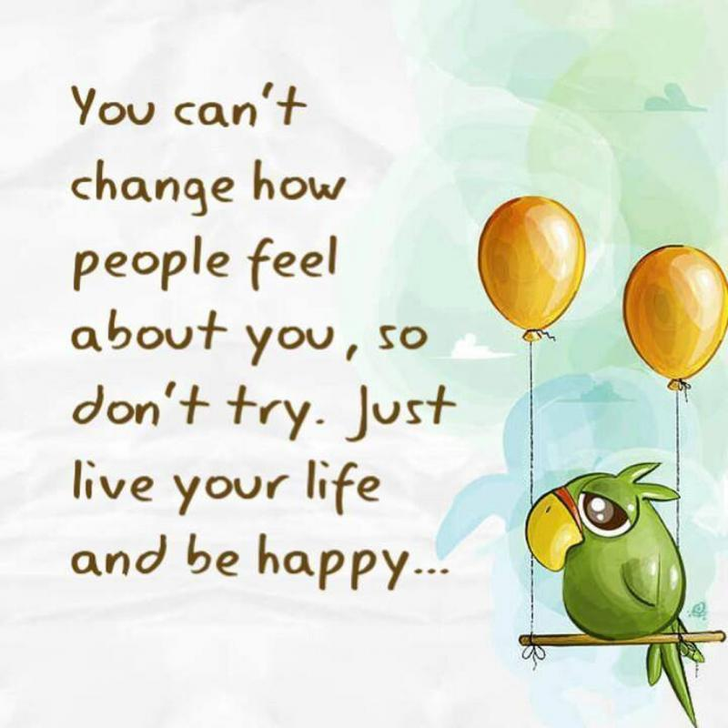 You can't change how people feel about you, so don't try. Just live your life and be happy Picture Quote #1