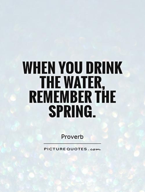 When you drink the water, remember the spring Picture Quote #1